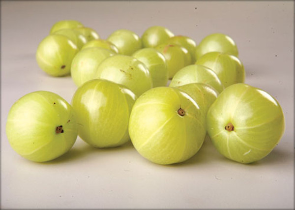 The Benefits of Ayurvedic Medicine: Amla_amla gooseberries