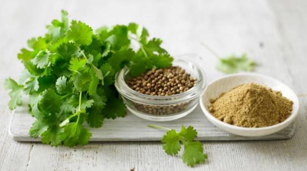 coriander_fresh-seeds-powder