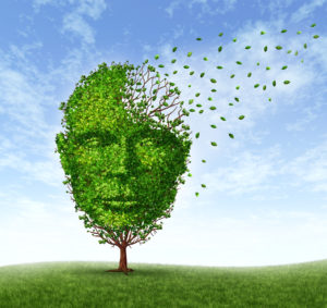 Human dementia problems as memory loss due to age and Alzheimer's disease with the medical icon of a tree in the shape of a front face human head and brain losing leaves as thoughts and mind function fade away.