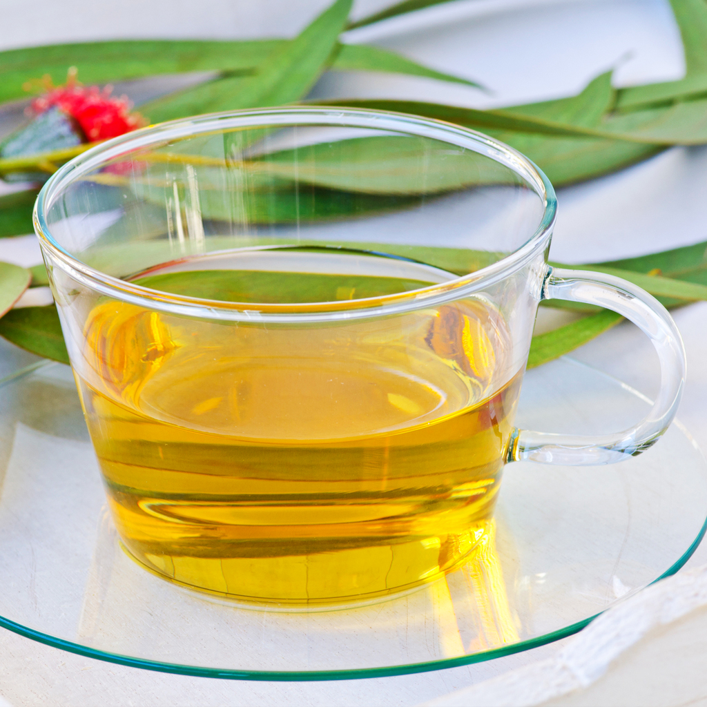 Natural Pain Relief: Herbs_eucalyptus tea